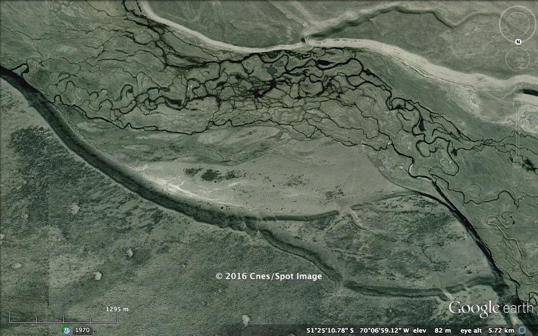 wetlands research paper