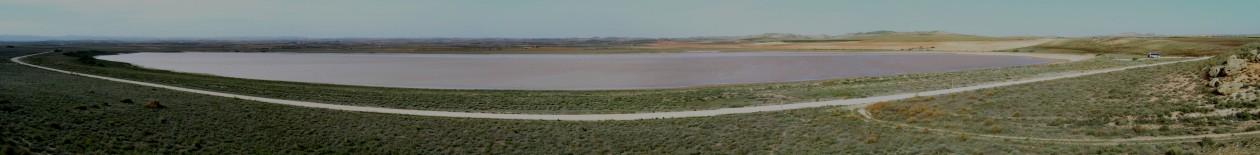 The Wetlands in Drylands (WiDs) Research Network