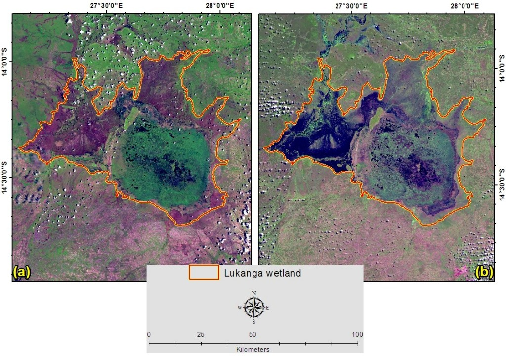 Mosaics of LandsatLook images showing the saturation condition of Lukanga wetland in central Zambia on 18 and 27 November 2013 (a; early wet season), and 20 and 27 April 2014 (b; late wet season).