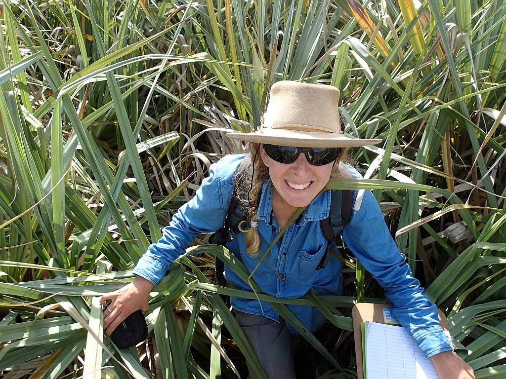Pippa Schlegel conducting vegetation sampling in the Krom River wetlands, Eastern Cape, South Africa.