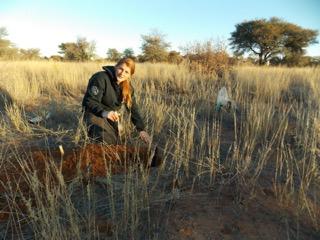 Soil sample collection in Botswana